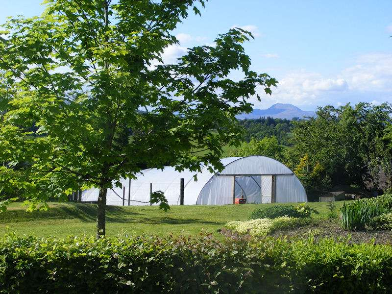 Loch Lomond Guest House And Garden Rooms